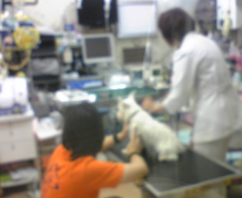 20081004_102116