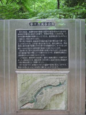 2009051608